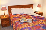 Homestead Motor Inn And Apartments - Tweed Heads Accommodation