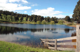 Glenlynn Cottages - Tweed Heads Accommodation