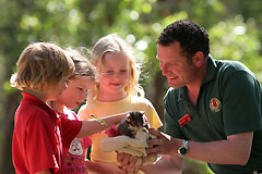 Cleland Wildlife Park - Tweed Heads Accommodation