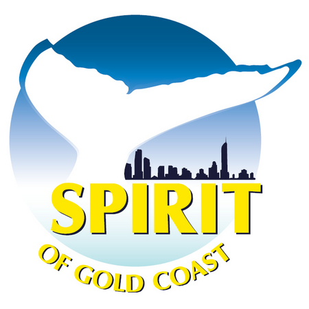 Spirit of Gold Coast Whale Watching - Tweed Heads Accommodation
