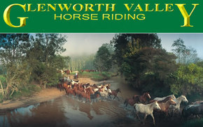 Glenworth Valley Horseriding - Tweed Heads Accommodation