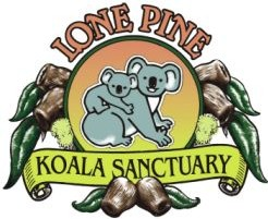 Lone Pine Koala Sanctuary - Tweed Heads Accommodation