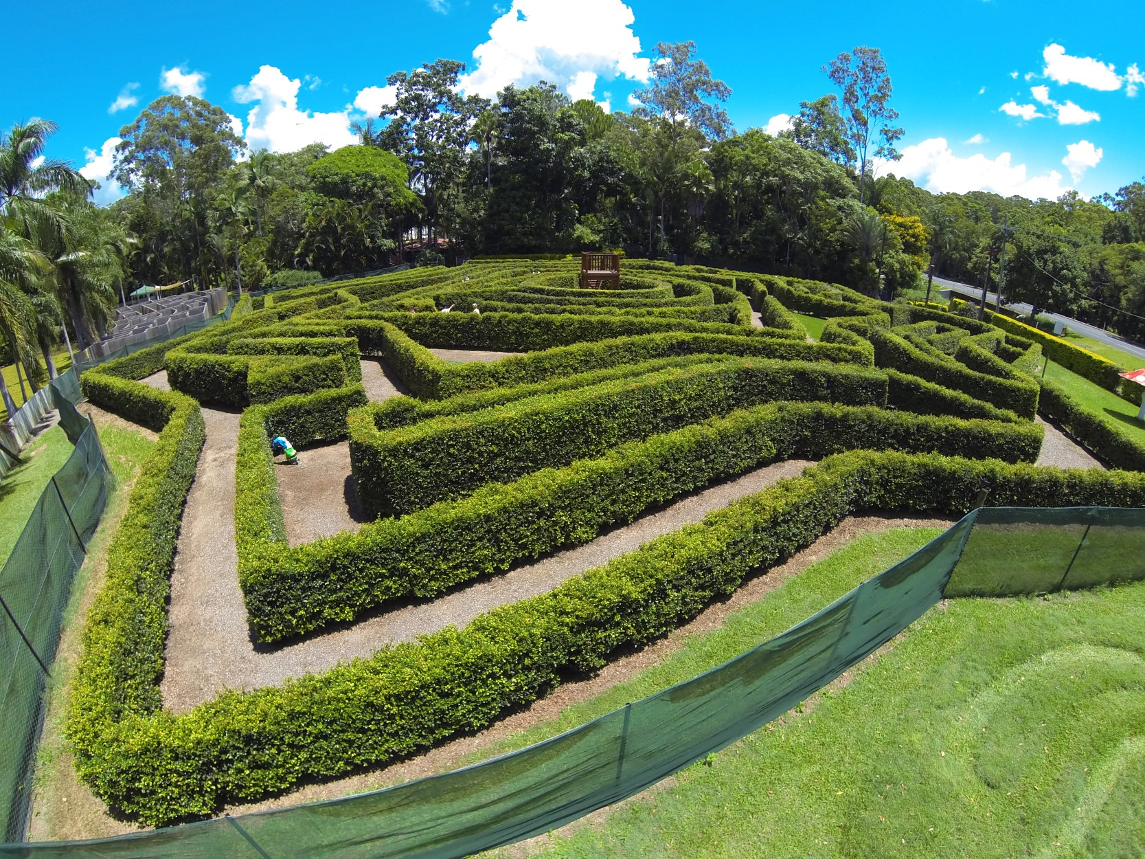 Bellingham Maze - Tweed Heads Accommodation