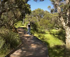 Leschenault Peninsula Conservation Park - Tweed Heads Accommodation