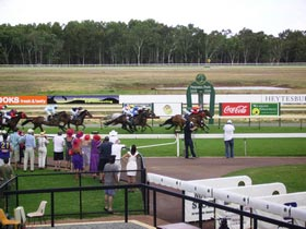 Pinjarra Race Club - Tweed Heads Accommodation