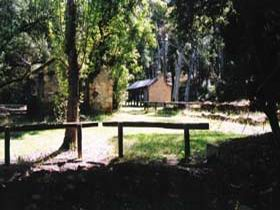 Wirrabara Forest Reserve - Tweed Heads Accommodation