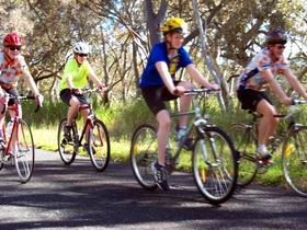 Penola Cycling Trails - Tweed Heads Accommodation