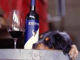 Koonara Wines - Tweed Heads Accommodation