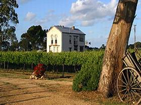 Highbank Vineyards - Tweed Heads Accommodation