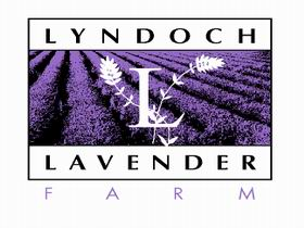 Lyndoch Lavender Farm and Cafe - Tweed Heads Accommodation
