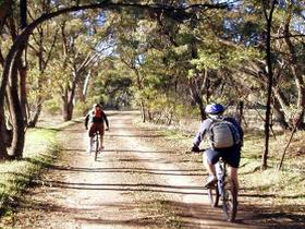 Bike About Mountain Bike Tours And Hire - Tweed Heads Accommodation
