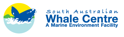 South Australian Whale Centre - Tweed Heads Accommodation
