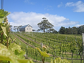 Bruny Island Premium Wines Bar and Grill - Tweed Heads Accommodation