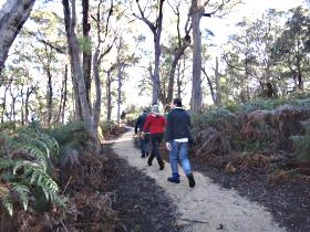 Bridport Walking Track - Tweed Heads Accommodation
