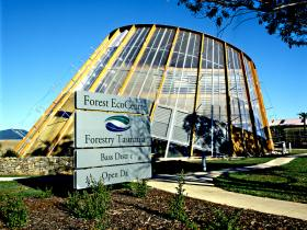 Forest EcoCentre - Tweed Heads Accommodation
