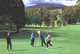 Deloraine Golf Course - Tweed Heads Accommodation