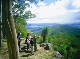 Gold Coast Hinterland Great Walk - Tweed Heads Accommodation