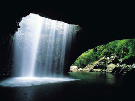 Natural Bridge Springbrook National Park - Tweed Heads Accommodation