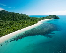 Cape Tribulation Daintree National Park - Tweed Heads Accommodation