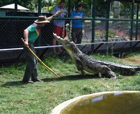 Snakes Downunder Reptile Park and Zoo - Tweed Heads Accommodation