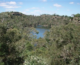 Mount Eccles National Park - Tweed Heads Accommodation