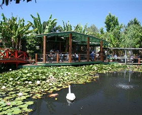 Blue Lotus Water Garden - Tweed Heads Accommodation
