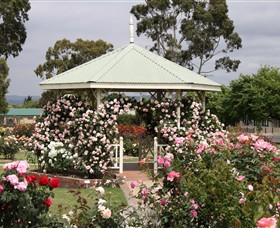 Morwell Centenary Rose Garden - Tweed Heads Accommodation