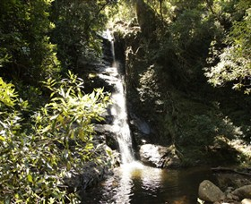 Macquarie Pass National Park - Tweed Heads Accommodation