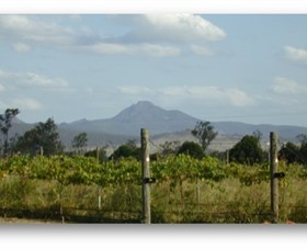 Ironbark Ridge Vineyard - Tweed Heads Accommodation