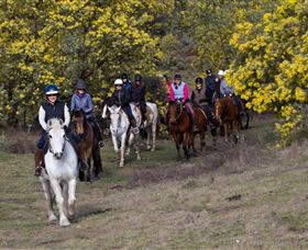 Burnelee Excursions on Horseback - Tweed Heads Accommodation