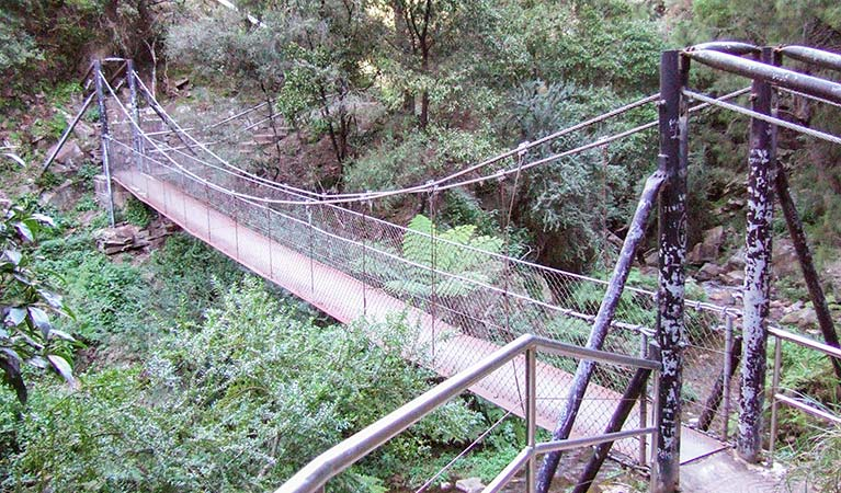 Jenolan River walking track - Tweed Heads Accommodation