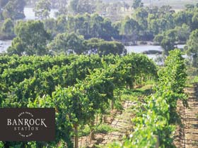 Banrock Station Wine And Wetland Centre - Tweed Heads Accommodation