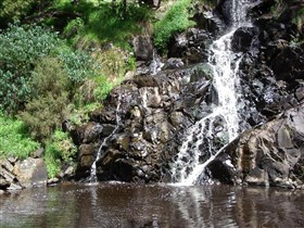Ingalalla Waterfalls - Tweed Heads Accommodation
