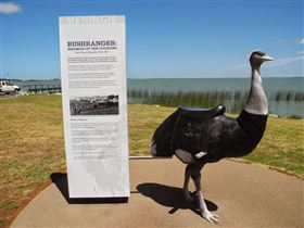 Birdman of the Coorong - Tweed Heads Accommodation