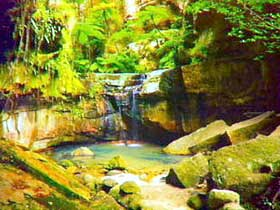 Carnarvon Gorge Carnarvon National Park - Tweed Heads Accommodation