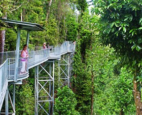 Mamu Tropical Skywalk - Tweed Heads Accommodation
