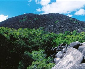 Black Mountain Kalkajaka National Park - Tweed Heads Accommodation