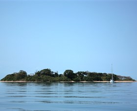Hope Islands National Park - Tweed Heads Accommodation