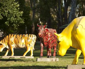 Greater Shepparton's Moooving Art - Tweed Heads Accommodation