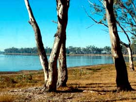 Lake Broadwater Conservation Park - Tweed Heads Accommodation