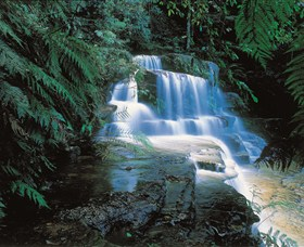 Leura Cascades - Tweed Heads Accommodation