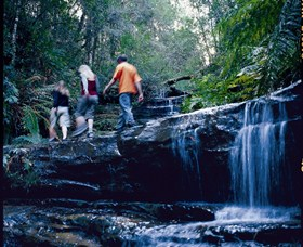 South Lawson Waterfall Circuit - Tweed Heads Accommodation