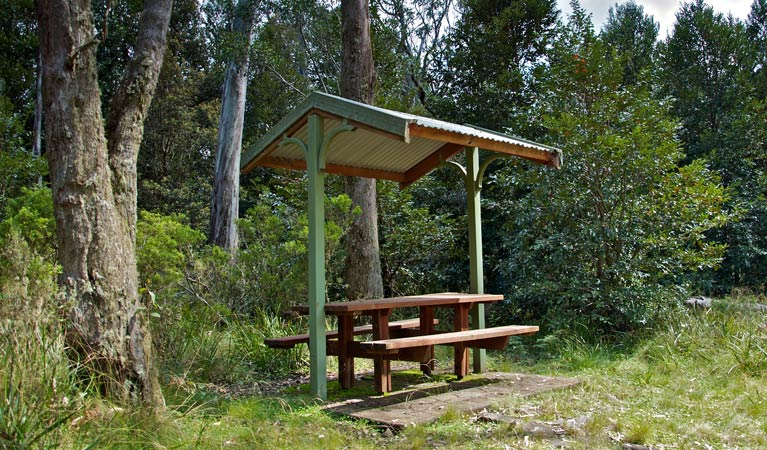Devils Hole lookout walk and picnic area - Tweed Heads Accommodation