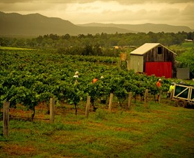 Around Hermitage Wine and Food Trail Hunter Valley - Tweed Heads Accommodation