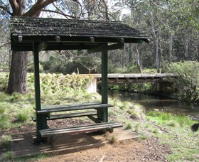 Barrington Tops State Forest - Tweed Heads Accommodation