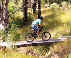 The Steps Mountain Bike Park - Tweed Heads Accommodation