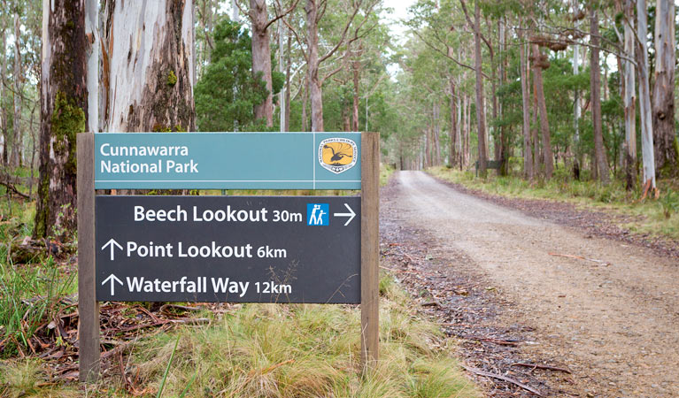Beech lookout - Tweed Heads Accommodation