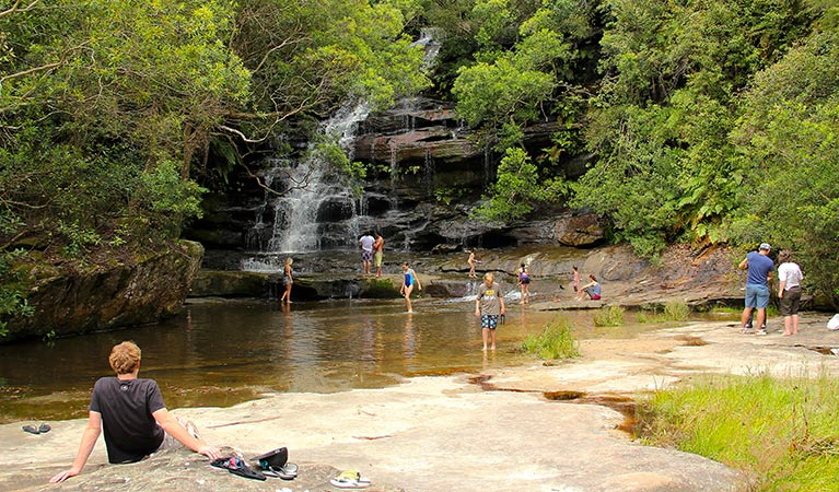 Somersby Falls picnic area - Tweed Heads Accommodation