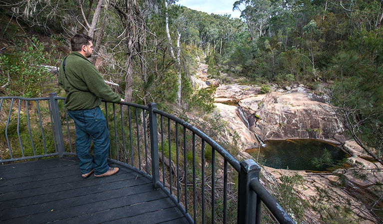 Biamanga National Park - Tweed Heads Accommodation