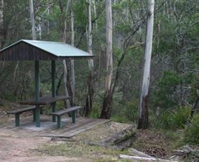 White Rock River picnic area - Tweed Heads Accommodation